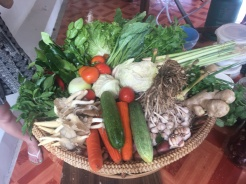 Some of the fresh vegetables.